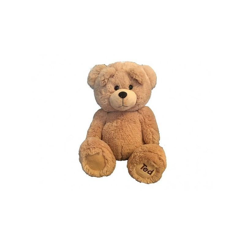 Peluche Ted tout doux 30 cm (2479)